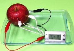 親子科学ワークショップ「なんでも電池に挑戦!そして、静電気でビリビリとふわふわ?!」